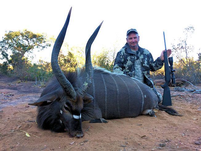Nyala Bul Hunting
